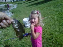 Addi Fishing
